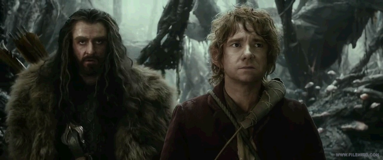 The.Hobbit.The.Desolation.of.Smaug.2013.EXTENDED.720p.Ganool_www.FileNiko.com_.mkv_snapshot_00.33.48_[2015.04.15_21.23.26]