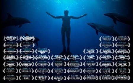 دانلود مستند The Cove 2009 خلیج با زیرنویس فارسی مالتی مدیا مستند