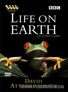 دانلود مجموعه مستند Life on Earth 1979 زندگی بر روی زمین با زیرنویس انگلیسی مالتی مدیا مستند