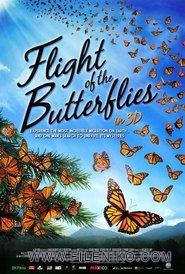 دانلود مستند Flight of the Butterflies 2012 پرواز پروانه ها مالتی مدیا مستند