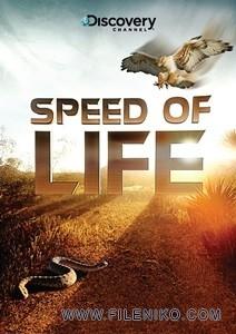 دانلود مجموعه مستند Speed of Life سرعت زندگی با دوبله فارسی مالتی مدیا مستند مطالب ویژه