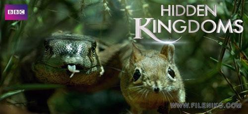 دانلود مستند Hidden Kingdoms پادشاهی پنهان حیوانات دوزبانه: اصلی+دوبله فارسی